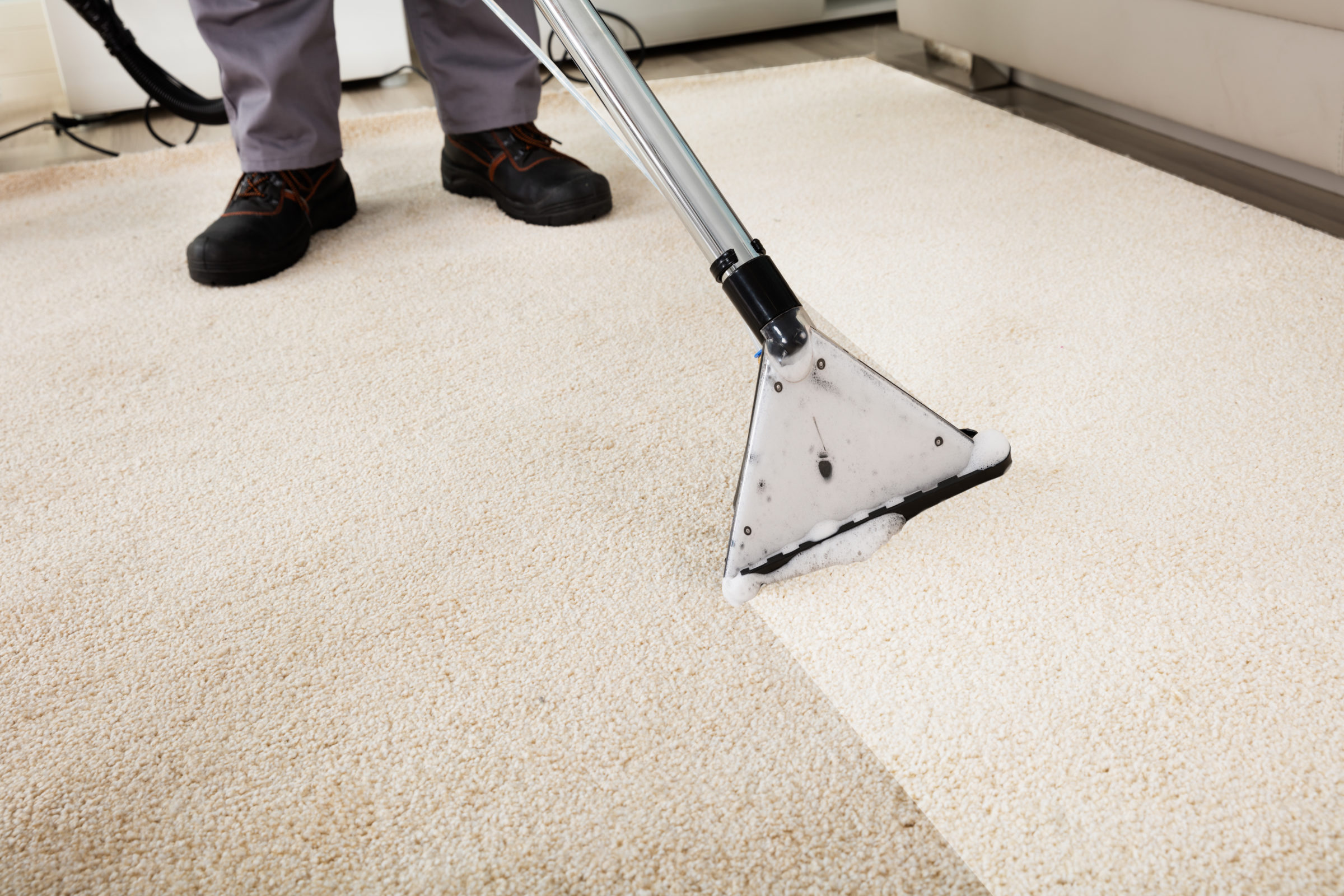 Palouse Carpet Cleaning Near Me | Man Cleaning Carpet