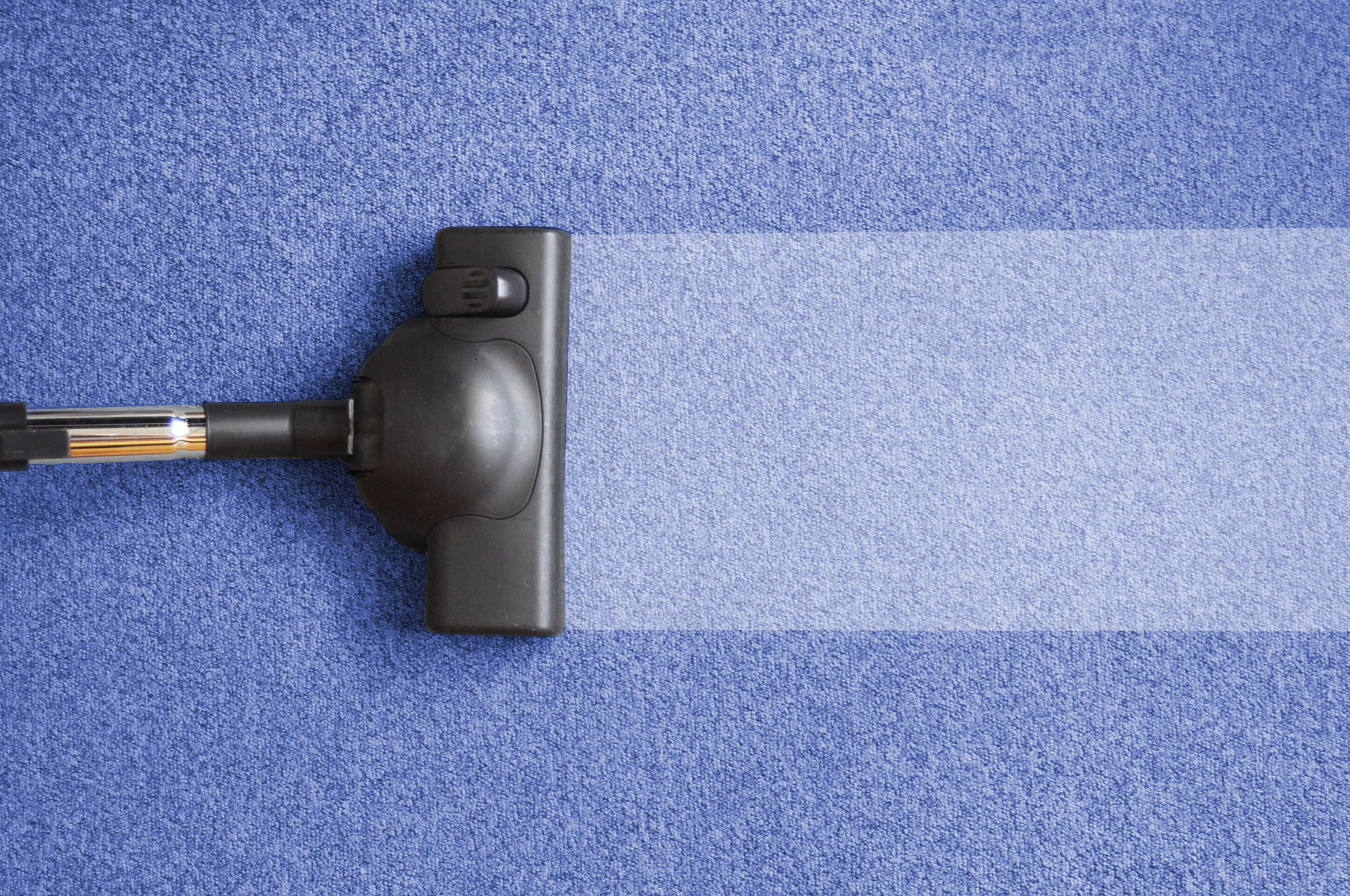 Palouse Carpet Cleaning Near Me | Cleaning A Carpet