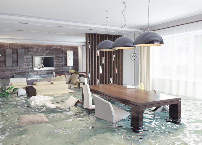 Flood water damage remediation services